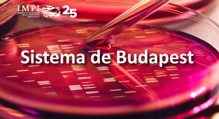 Sistema de Budapest para el depósito de microorganismos
