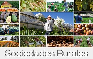 Qué son las Sociedades Rurales