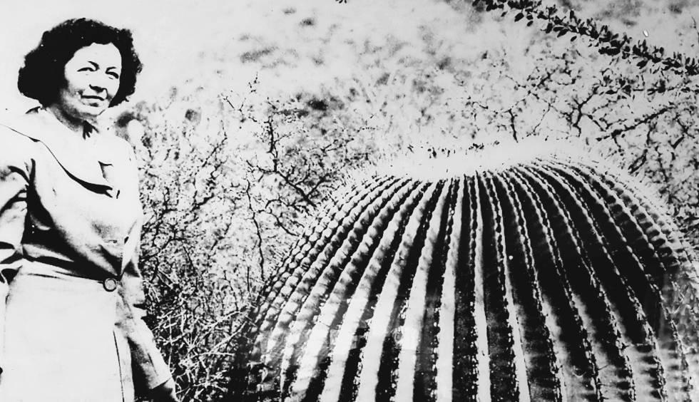 Vista general de mujer al lado de un cactus