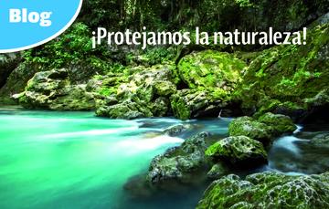 Día Internacional de la Protección de la Naturaleza