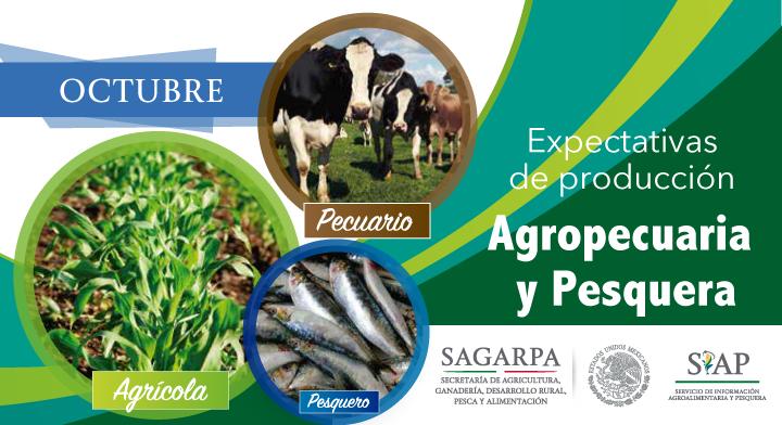 Al mes de octubre, la expectativa de producción nacional agropecuaria y pesquera para 2018 es de 226 millones de toneladas
