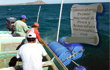 Convocan a Premio Nacional de Pesca y Acuacultura Sustentables 2018