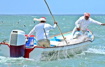 Recomendaciones pesqueras por el #HuracánWilla