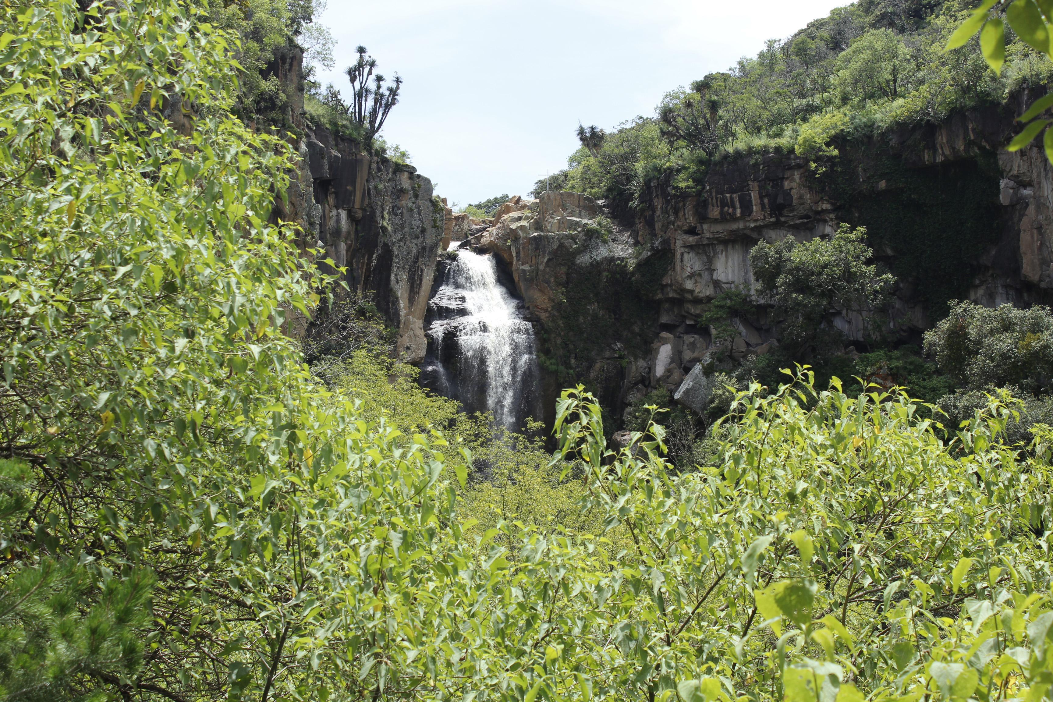 Cascada enclavada en zona rocosa.