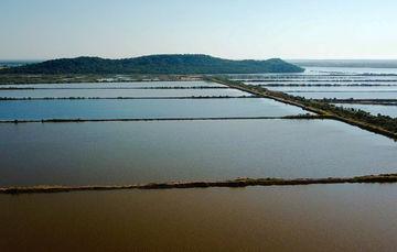 """Activa SAGARPA seguros agropecuarios y acuícolas  por Huracán """"Willa"""" y la Depresión Tropical """"Vicente"""""""
