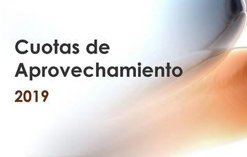 Dirección de Programas Institucionales y Documentación