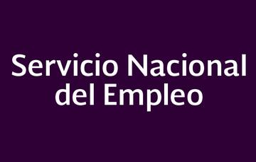 Servicio nacional del empleo