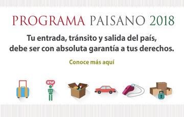 Programa Paisano 2018