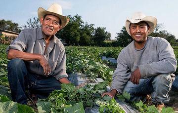 La agricultura mexicana, un logro muy valioso