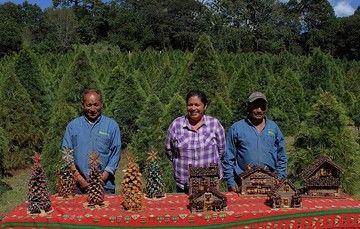 Productores de árboles de NAvidad de Tlaxcala muestran sus artesanías en una mesa, frente a la plantación.