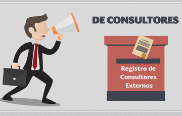 Consultores Externos