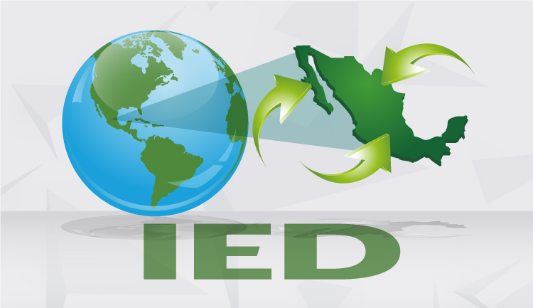 Logo de la IED