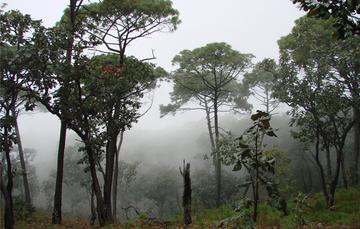 México, primer país que elaboró y aplicó una Ley General de Cambio Climático (2012).