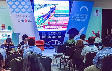 La sustentabilidad está en la pesca legal soportada  en permisos y concesiones: CONAPESCA