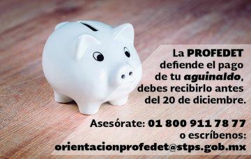 La profedet defiende el pago de tu aguinaldo, debes recibirlo antes del 20 de diciembre. Asesórate: 018009117877 o escríbenos a orientacionprofedet@stps.gob.mx