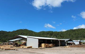 Paisaje del bosque y el aserradero de Chavarria, en Durango.