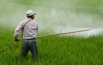 Los países en desarrollo deben ser informados sobre la fabricación de agroquímicos en naciones desarrolladas.