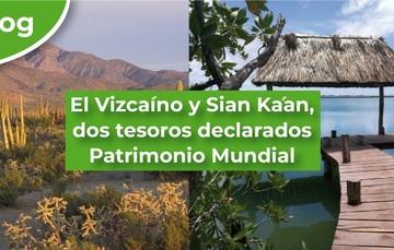 El Vizcaíno y Sian Ka'an, dos tesoros declarados Patrimonio Mundial.