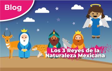 Los 3 Reyes de la Naturaleza Mexicana