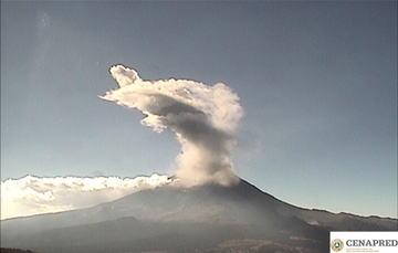 En las últimas 24 horas, por medio de los sistemas de monitoreo del volcán Popocatépetl, se identificaron 216 exhalaciones, tres Vt y 10 minutos de tremor.