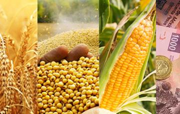 Apertura de ventanillas para la compra de coberturas del ciclo agrícola OI-2018/2019