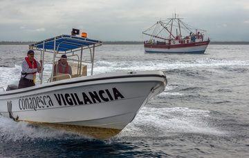 Se reclutarán oficiales de pesca, se reestructurarán las zonas de inspección y vigilancia y habrá operativos en donde se cuenta con registro de pesca furtiva.