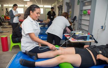 Licenciados en Terapia Física y Terapia Ocupacional.