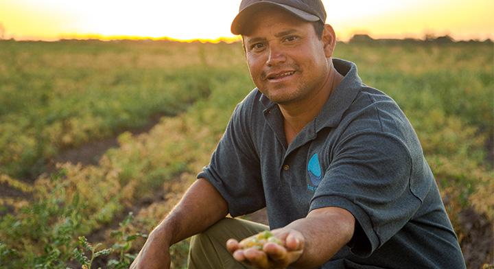SEGALMEX: Productividad agroalimentaria y distribución de alimentos