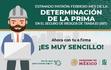 Determinación de la Prima en el Seguro de Riesgos de Trabajo ante el IMSS