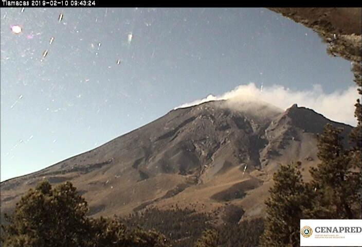 En las últimas 24 horas, por medio de los sistemas de monitoreo del volcán Popocatépetl, se identificaron 243 exhalaciones acompañadas de vapor de agua, gas y ligeras cantidades de ceniza.
