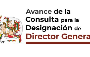 Texto con logotipo del INPer que a la letra dice: Consulta para la Designación de Director General