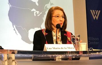 La Subsecretaria, Luz María de la Mora en discurso.