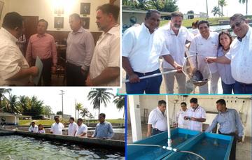 cuatro imágenes de visita de trabajo al estado de Veracruz