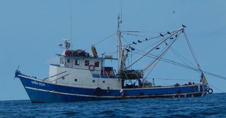 Embarcaciones en proceso de certificación MSC