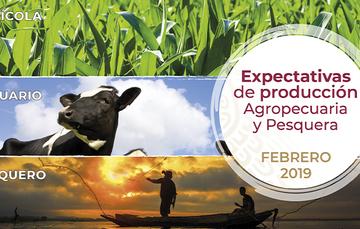 Al mes de febrero, la expectativa de producción nacional agropecuaria y pesquera para 2018 es de 224.2 millones de toneladas