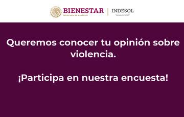 Banner sobre encuesta de violencia de género.