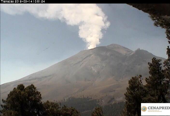En las últimas 24 horas, por medio de los sistemas de monitoreo del volcán Popocatépetl se identificaron 61 exhalaciones de baja intensidad, acompañadas de una emisión continua de vapor de agua, gas y ligeras cantidades de ceniza.