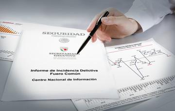Síntesis de la estadística de incidencia delictiva mensual