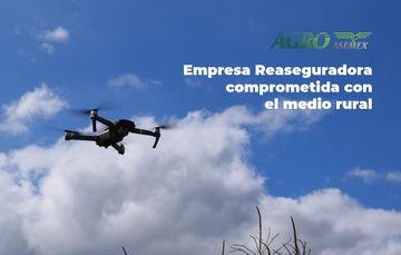 Dron sobrevolando campo de cultivo.