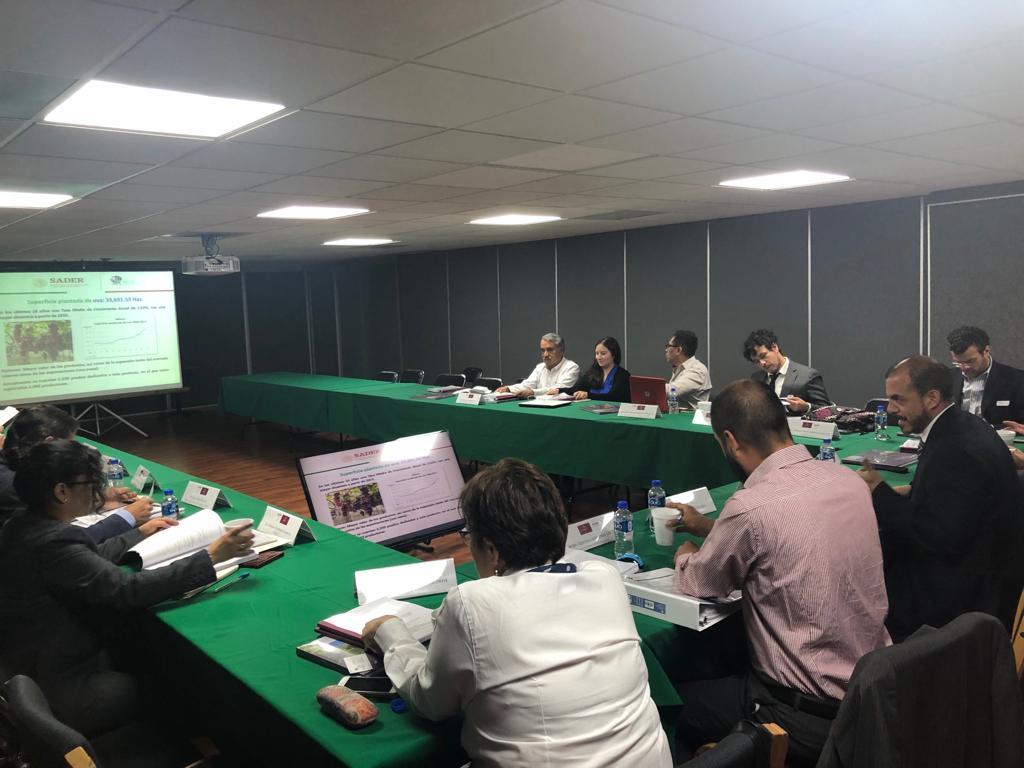 Participa Director General del INCA Rural en Reunión del Comité Interinstitucional de la Viña y el Vino