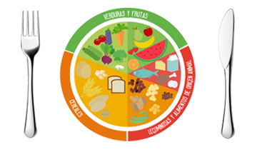 Grupos de alimentos el plato del buen comer