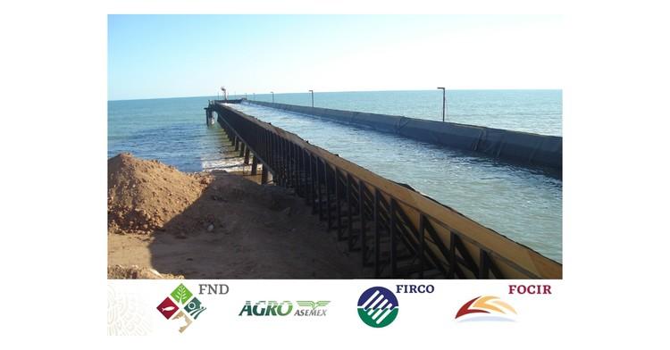 Otorgan financiamiento por más de 254 mdp para el sector acuícola y pesquero