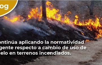 Continúa aplicando la normatividad vigente respecto a cambio de uso de suelo en terrenos incendiados