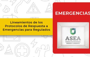 Lineamientos de los Protocolos de Respuesta a Emergencias para Regulados
