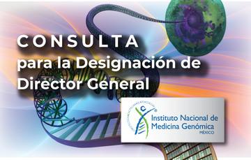 Imagen de la consulta.