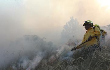 Una persona dedicada al combate de incendios forestales tiene una formación de por los menos dos cursos. Sin embargo, lo ideal es una preparación que tiene una duración similar a la de una carrera universitaria.