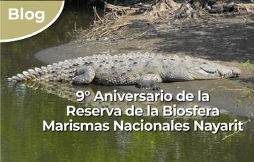 9º Aniversario de la Reserva de la Biosfera Marismas Nacionales Nayarit