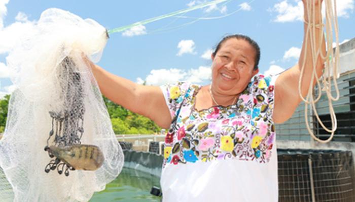 Ampliación de periodo de ventanillas Programa de Fomento a la Productividad Pesquera y Acuícola componente Desarrollo de la Acuacultura.