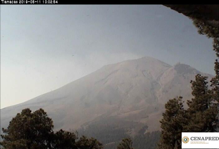 En las últimas 24 horas, por medio de los sistemas de monitoreo del volcán Popocatépetl, se identificaron 45 exhalaciones acompañadas de vapor de agua y gas.  Durante la noche no se observó incandescencia sobre el cráter.