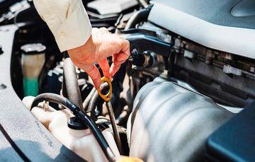 En el INEEL la flota vehicular tuvo mejoras en el rendimiento y una reducción en el consumo de combustible.